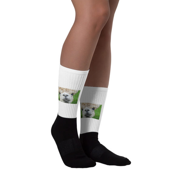 Alpaka Socken - Verrücktes Alpaka